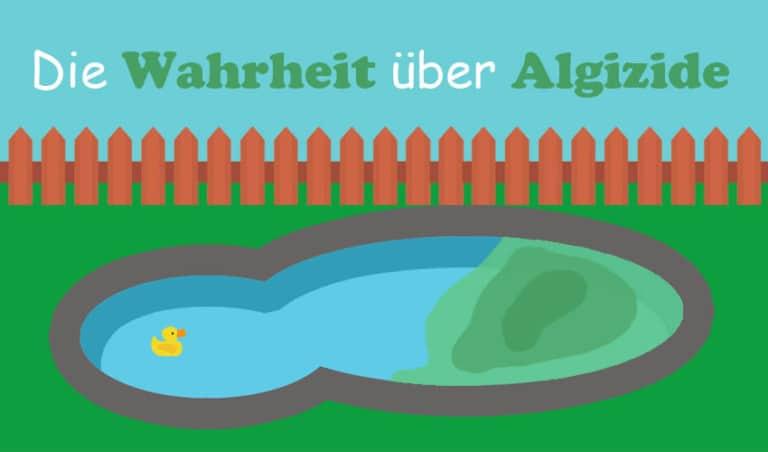 hausmittel gegen algen im pool
